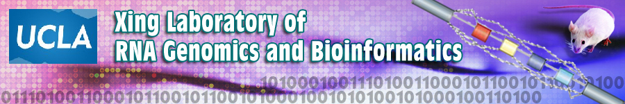 Xing Laboratory of RNA Genomics and Bioinformatics